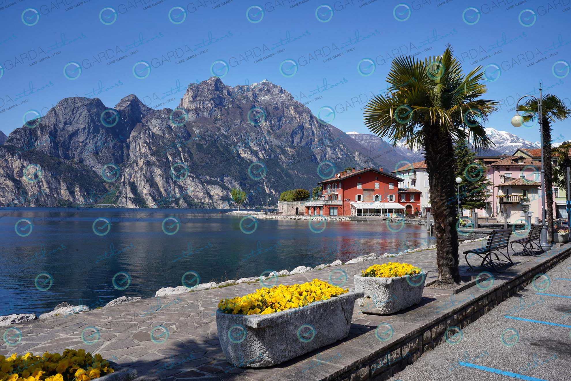 Torbole sul Garda - flowers and palms