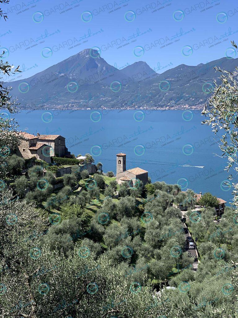 Biaza – church and olive trees