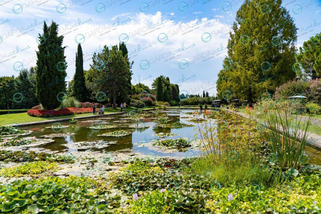 Parco Giardino Sigurtà – pond with water lilies